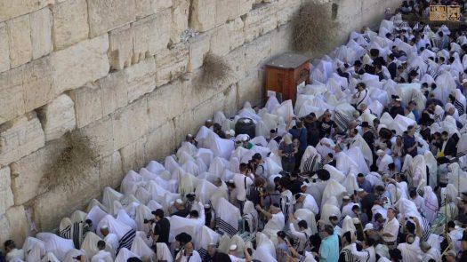"""הערכות ברחבת הכותל המערבי לקליטת מאות אלפי מתפללים בחג הסוכותול""""הקפות שניות"""" מרכזיות ברחבת הכותל המערבי"""