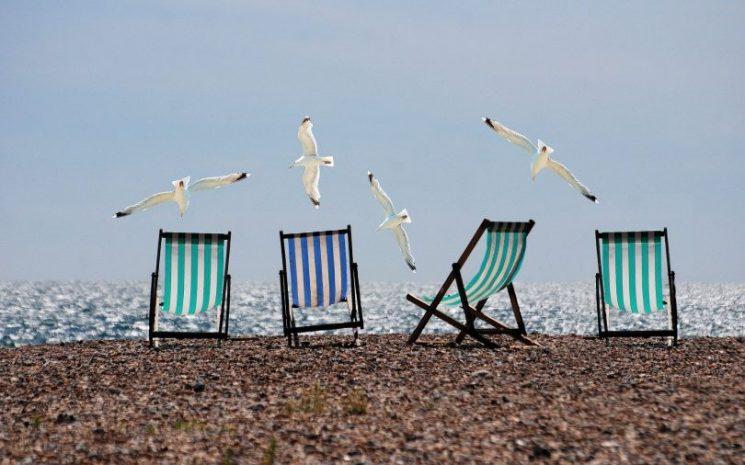 כסאות נוח חוף ים שחפים שחף