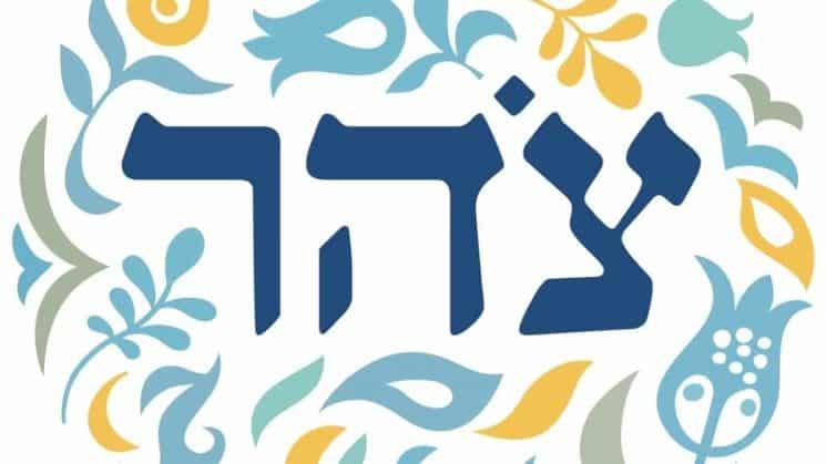 לוגו ארגון צהר