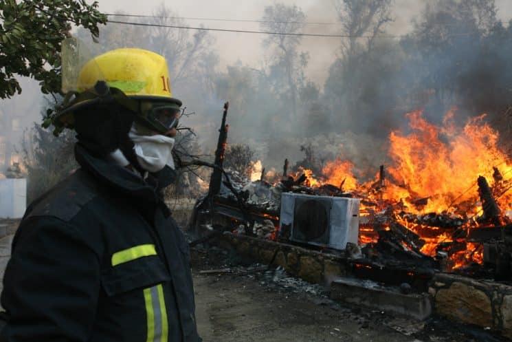 השריפה בכרמל. צילום: פלאש 90
