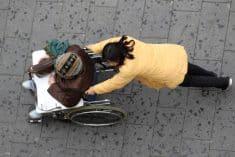 אשרה הומניטרית - מה צריך לדעת » מדריך obiter