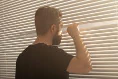 שכן שכנים מציץ חלון