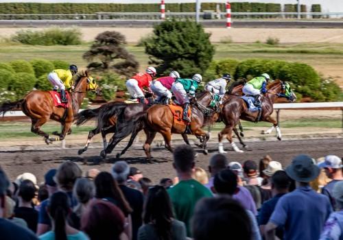 המשטרה פשטה על מרוץ סוסים לא חוקי בצפון